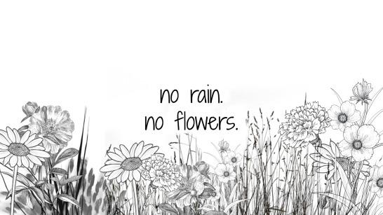 norainnoflowers
